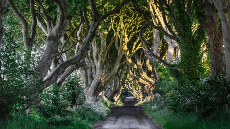 irlandia_20130613__JLK3485