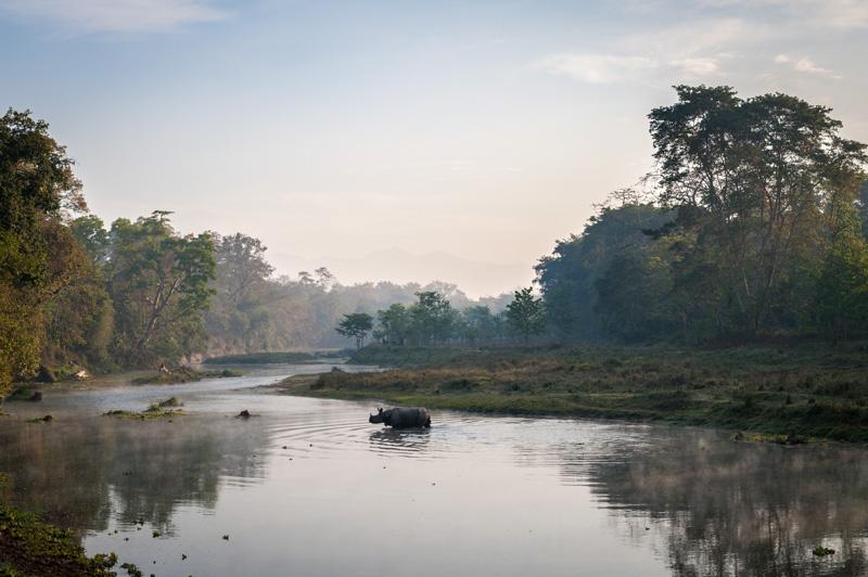 kadaj_nepal_chitwan_20120312_DSC6287