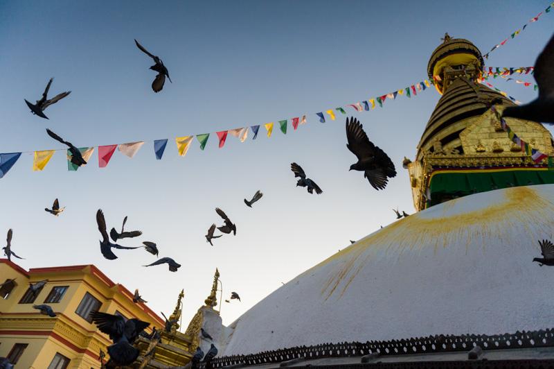 kadaj_nepal_kathmandu_20120311__DSC5737
